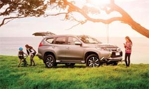Mitsubishi 5-Point Safety Check