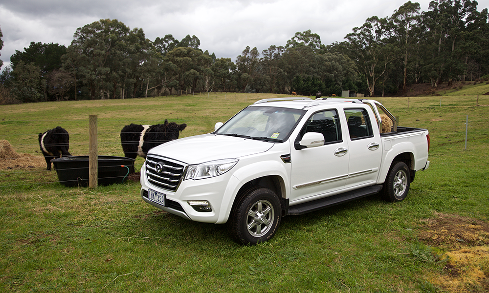 Great Wall Steed Dual Cab Brendan Foot Supersite
